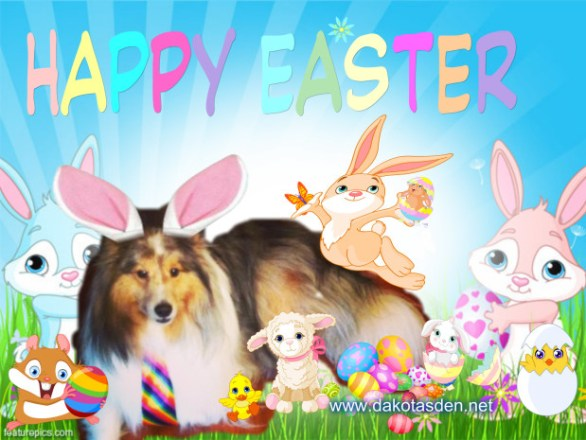 Easter Bunny Wallpapers HD