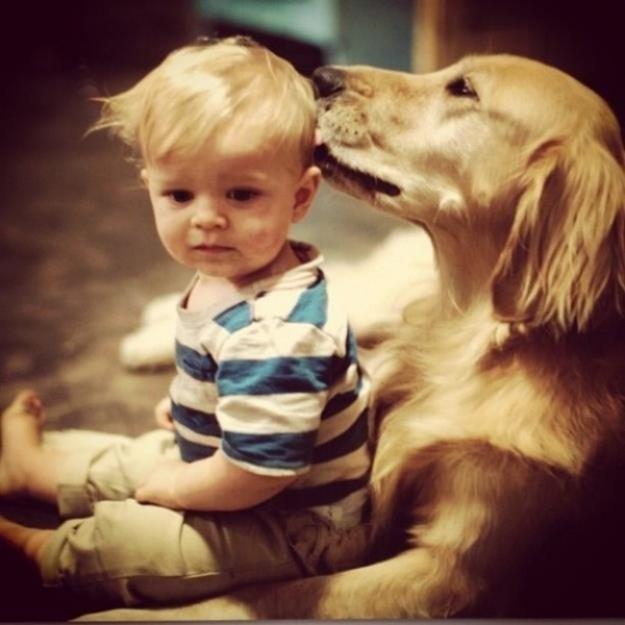 мальчик и пес