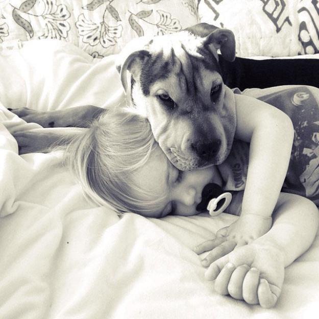 сладкая спящая парочка5