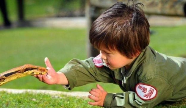 мальчик играет с удавом