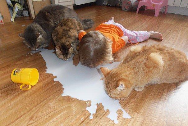 дети как животные