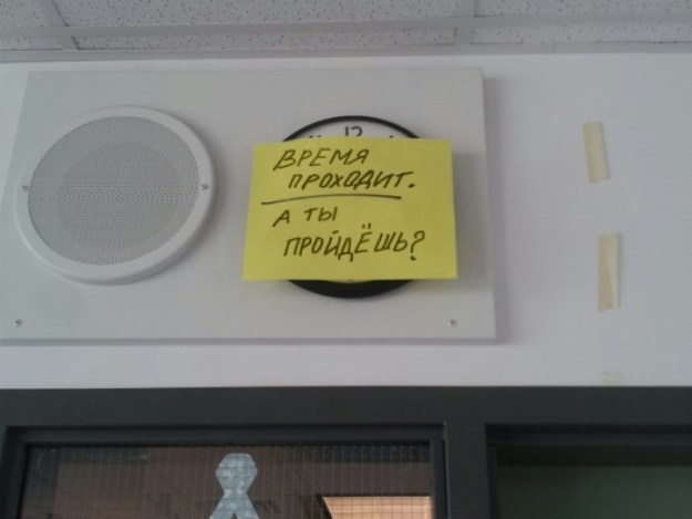 преподаватели крутіе