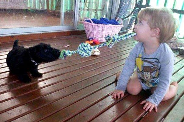 ребенок и пес