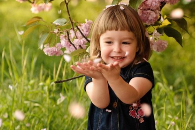 11 радостей для ребека