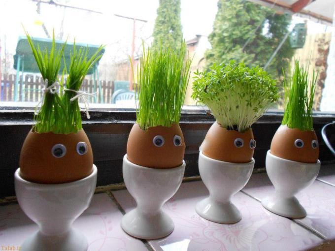 травка в яйце