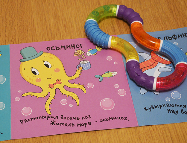octopus_foto