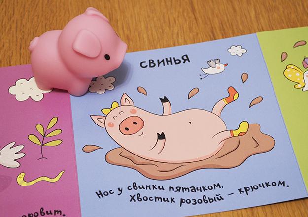 pig_foto