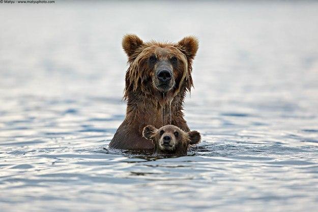 mama-uchit-plavat