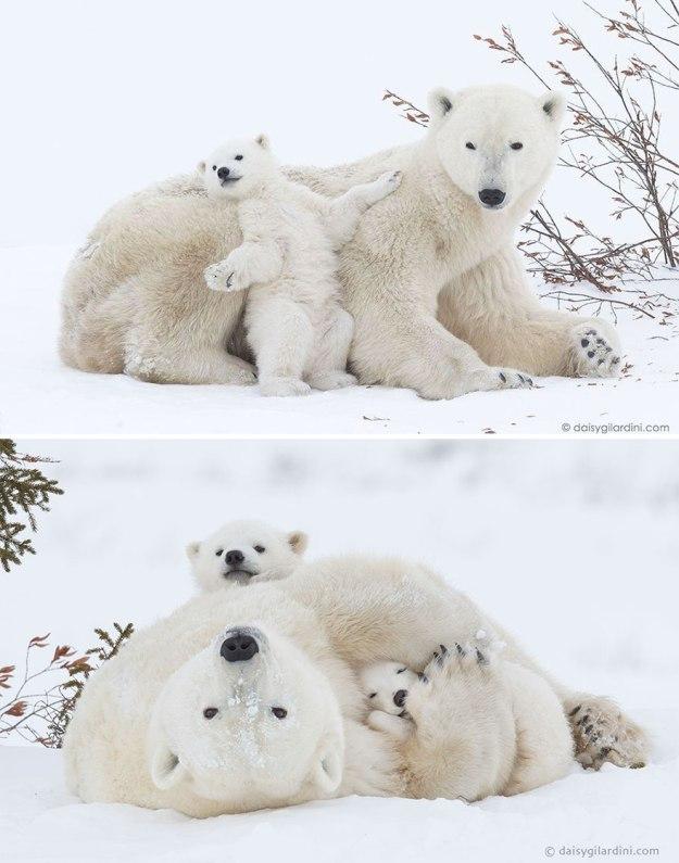 s-mamoj-dazhe-v-snegu-uyutno