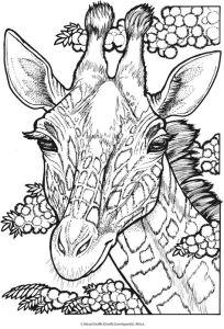 Антистресс жираф