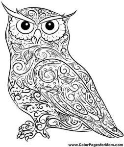 Черно белая Раскраска сова