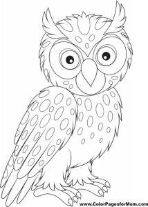 Раскраска для взрослых сова