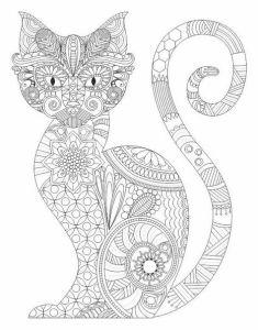 Антистресс раскраски красивая кошка