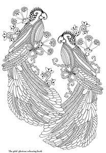 картинки птиц раскраски