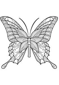 бабочка антистресс раскраска