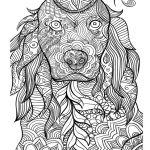 раскраски про собак