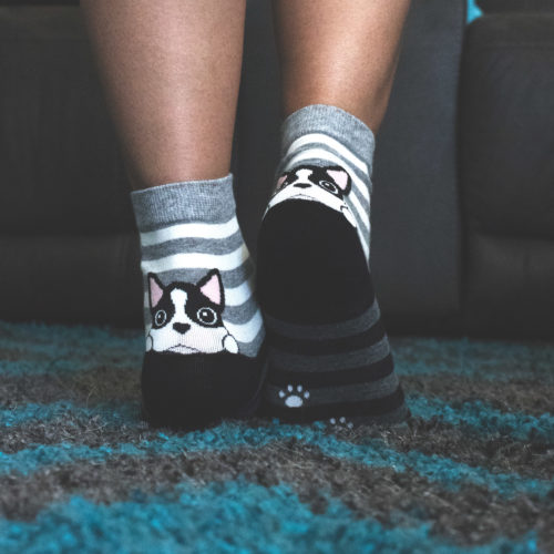 Grey Striped Puppy Socks