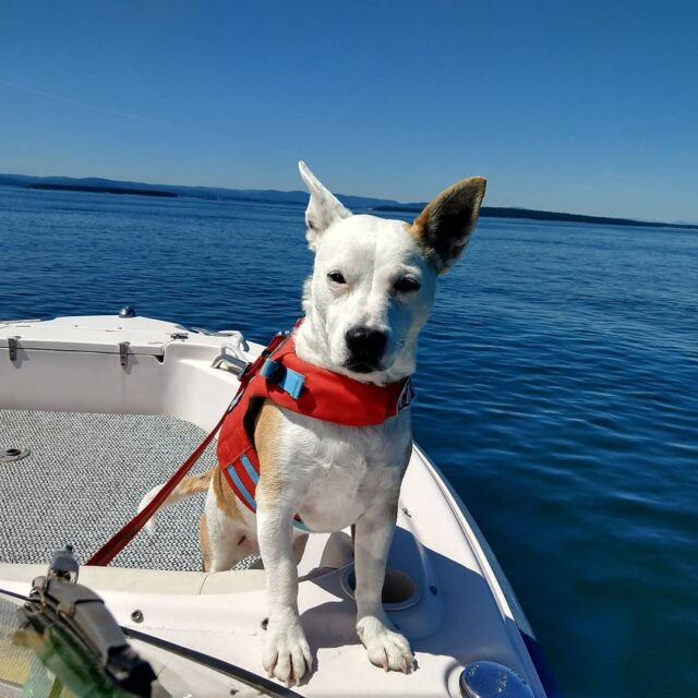 Eba on boat