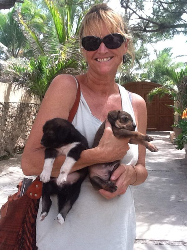 Woman holding stray puppies