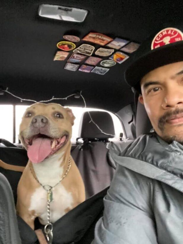 Dog rescued from shelter