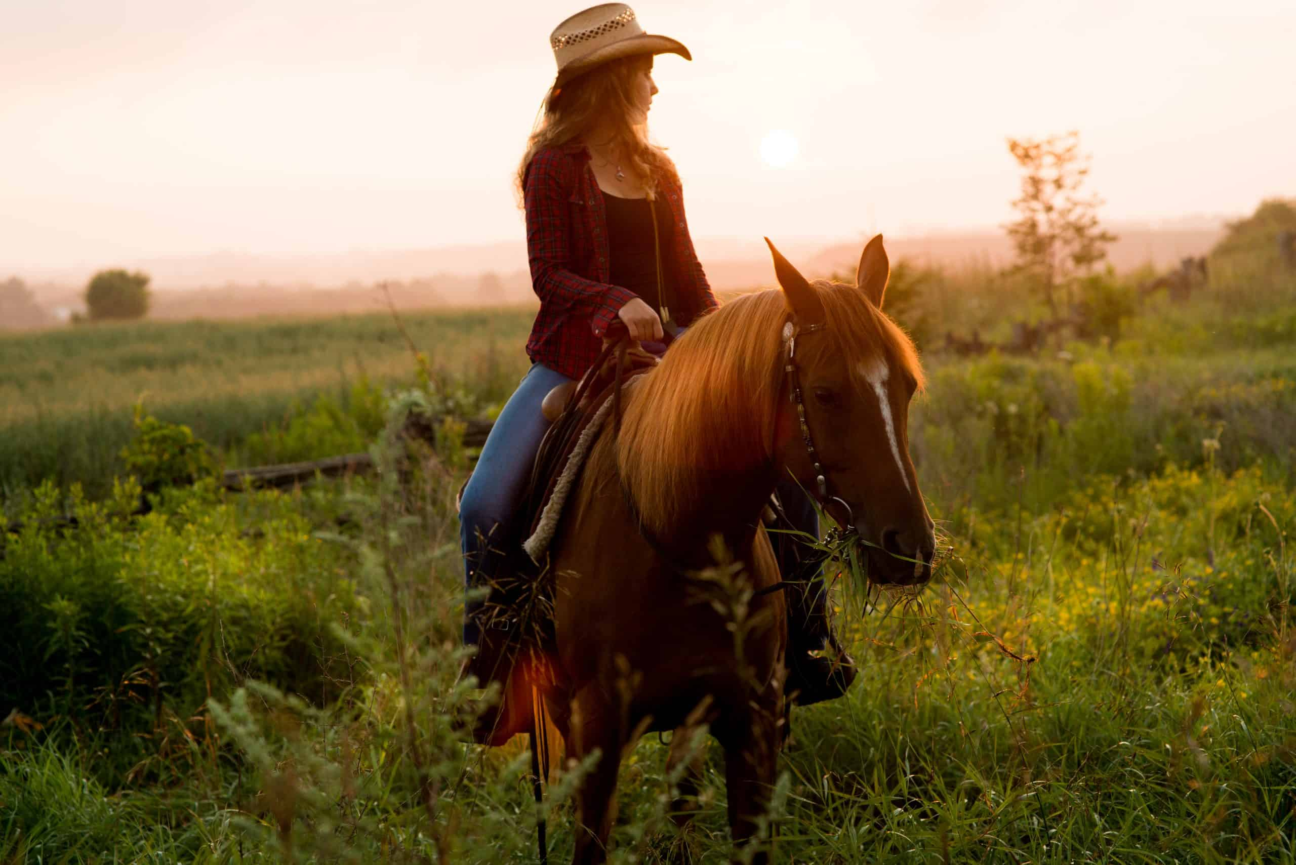 Country Girl taking an earl morning ride with Horse at Sunrise..  Backlit glow of Sun.
