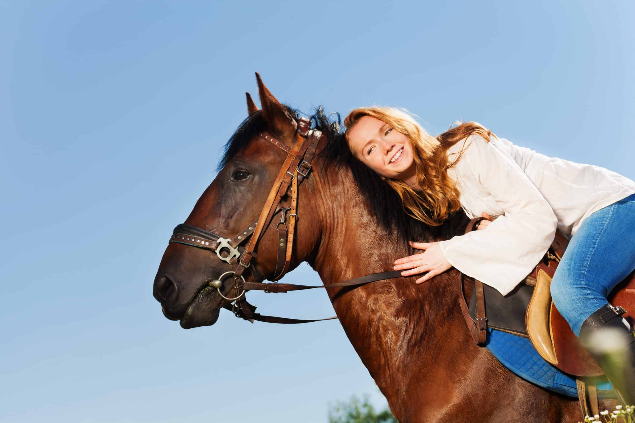 Portrait of smiling woman hugging beautiful bay horse against blue sky