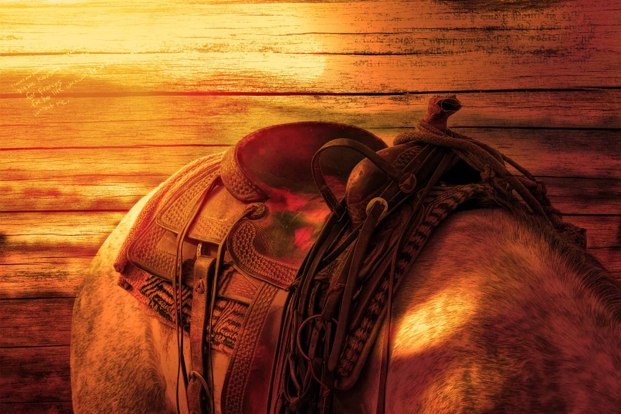 rown Leather Horse Saddle