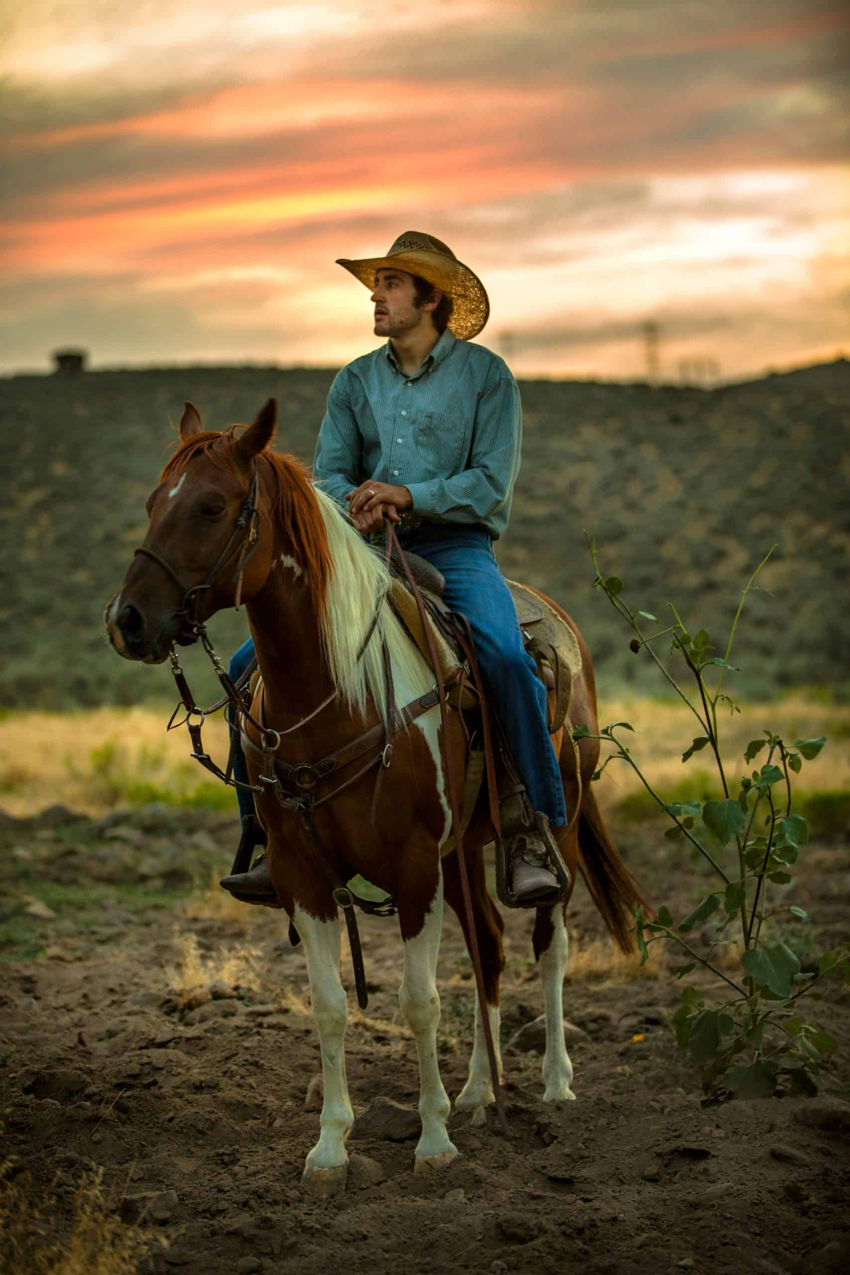 A cowboy sits astride his horse at sunset.