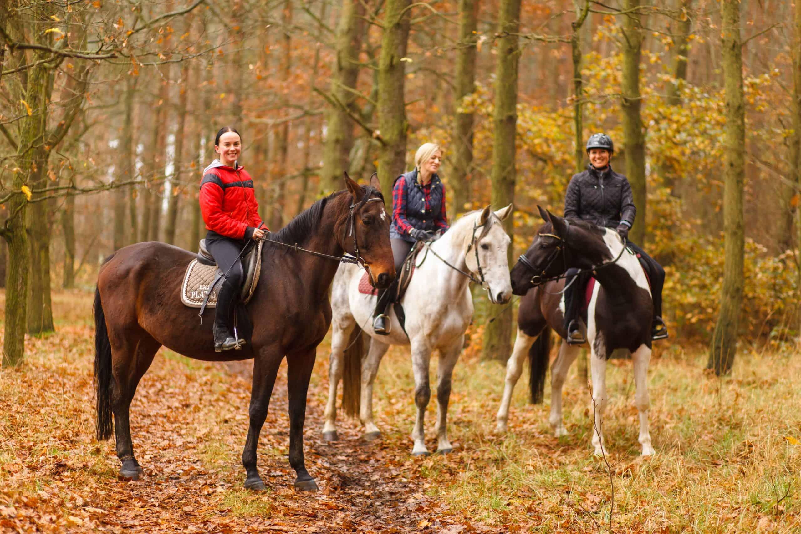 Horseback Riding (1)