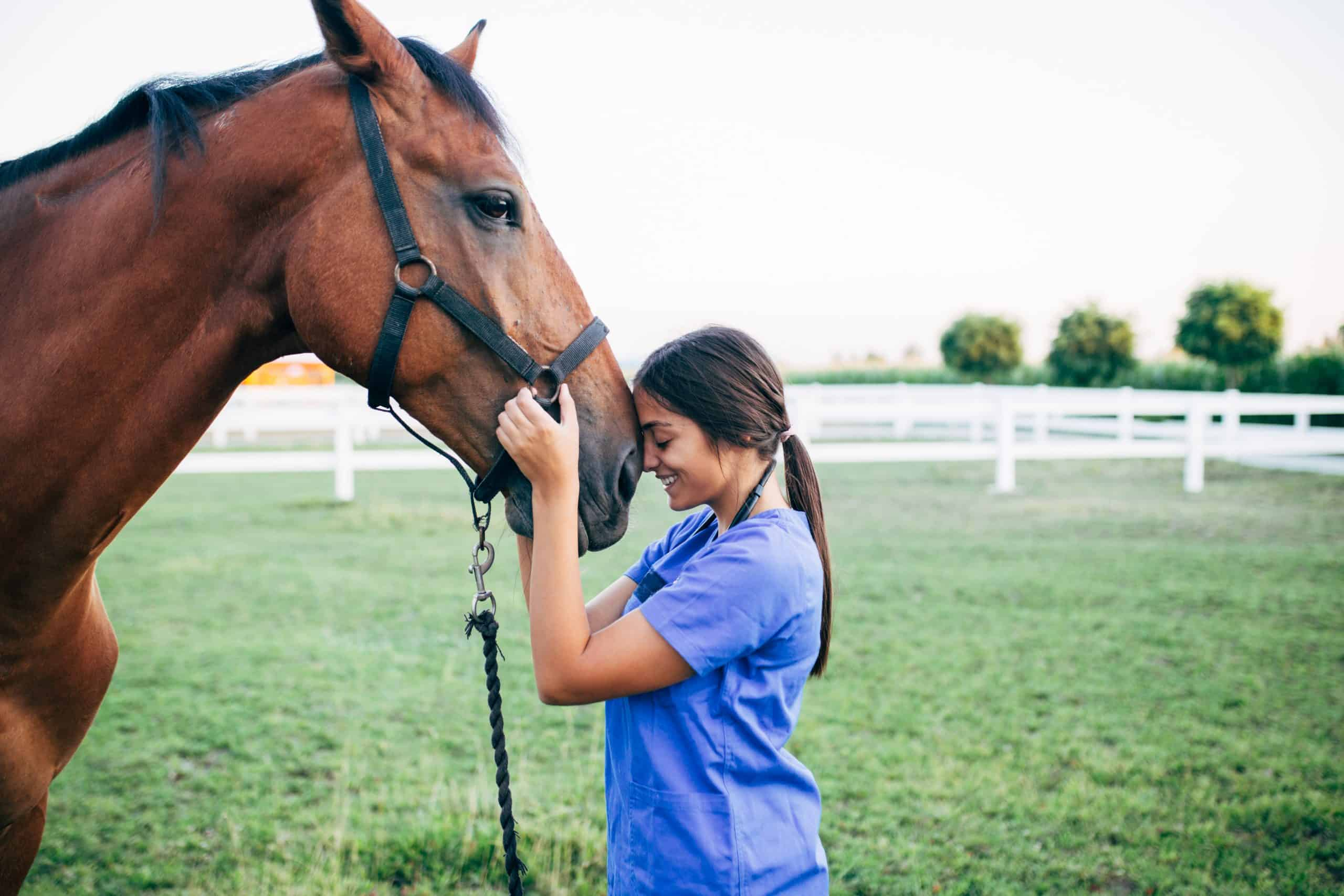 Vet enjoying with a horse outdoors at ranch.