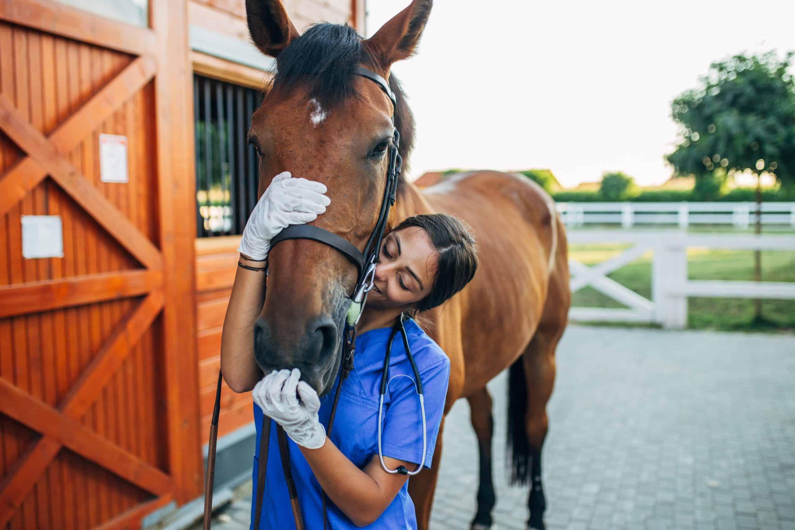 Vet kissing a horse outdoors at ranch.