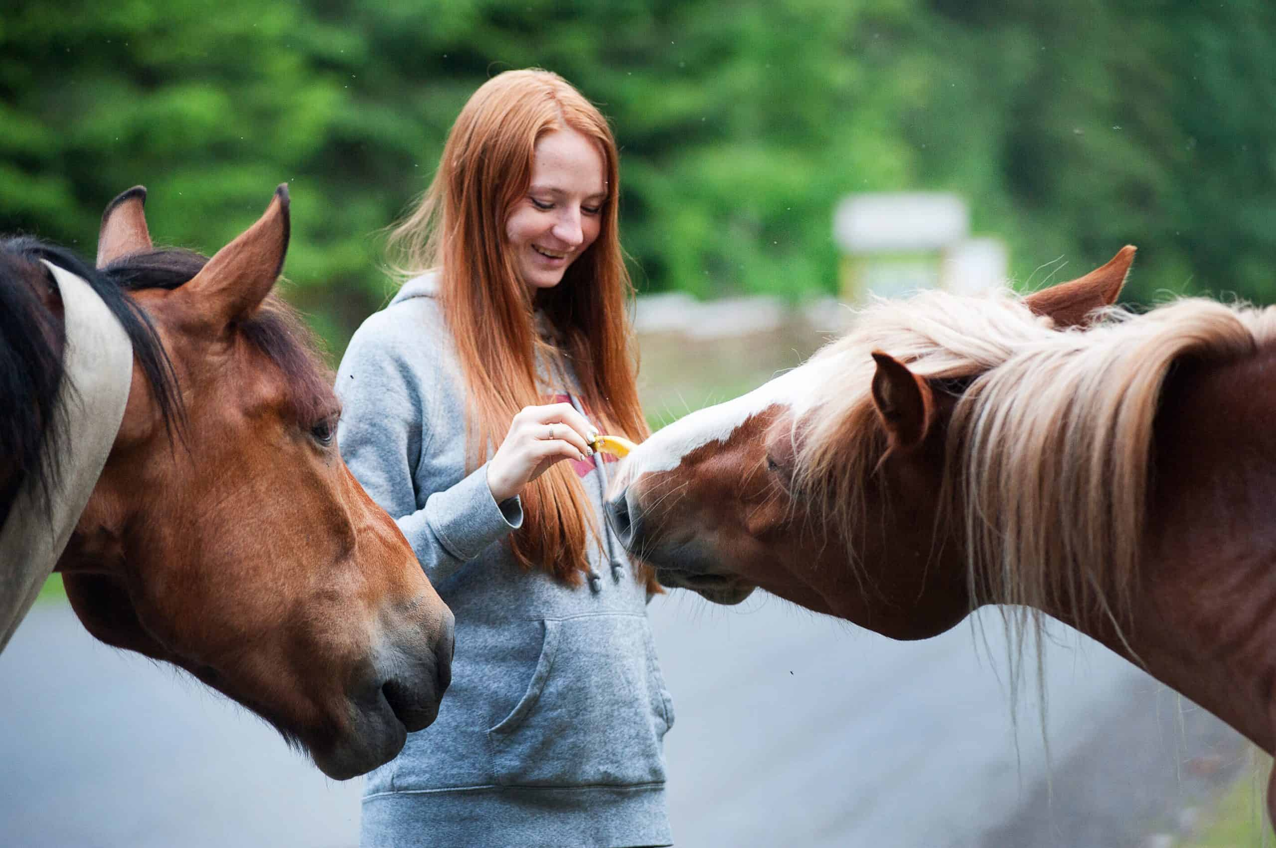 Canva - Close-Up Photography of Woman Near Horses (1)