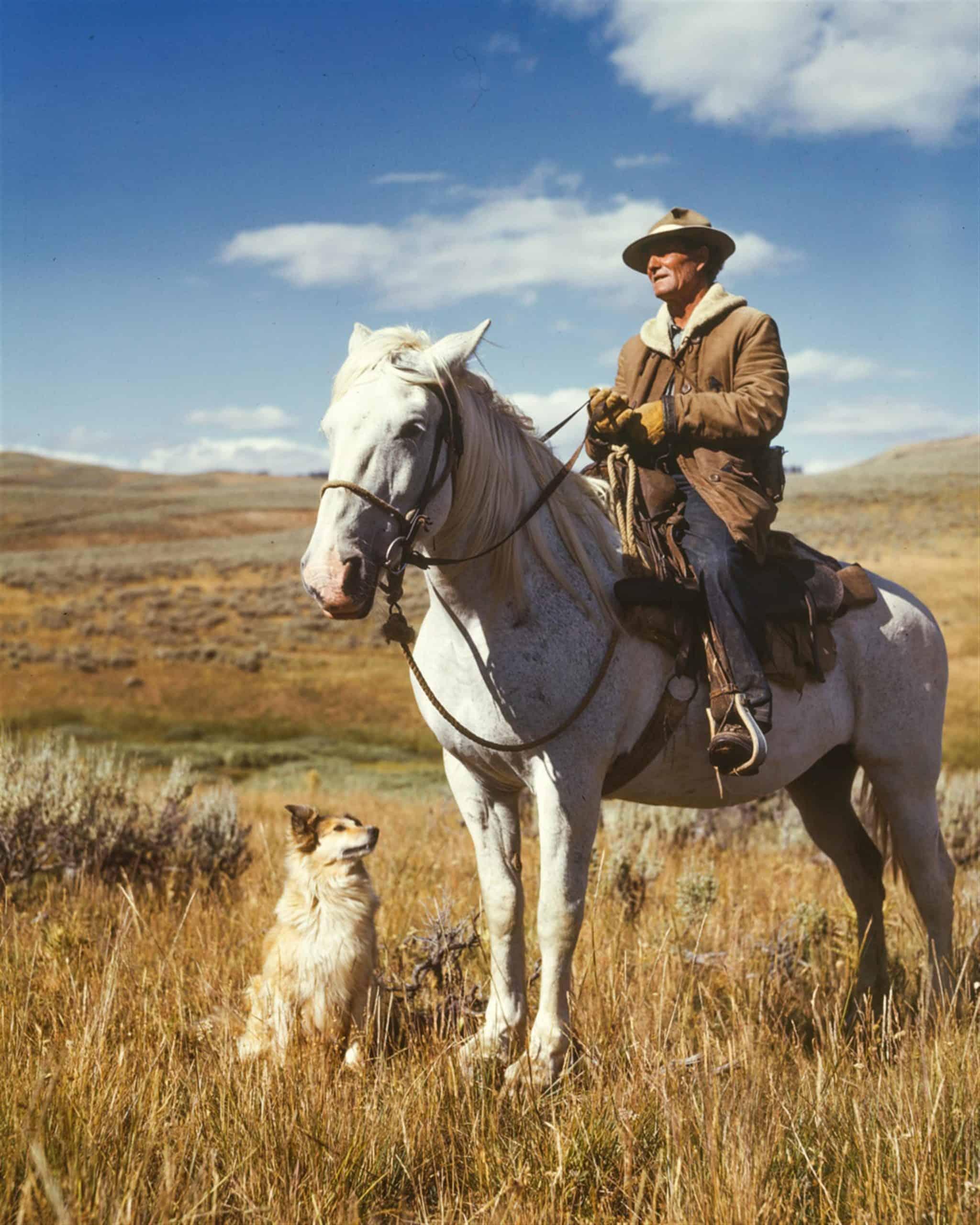 Canva - Farmer Riding a Horse with a Dog
