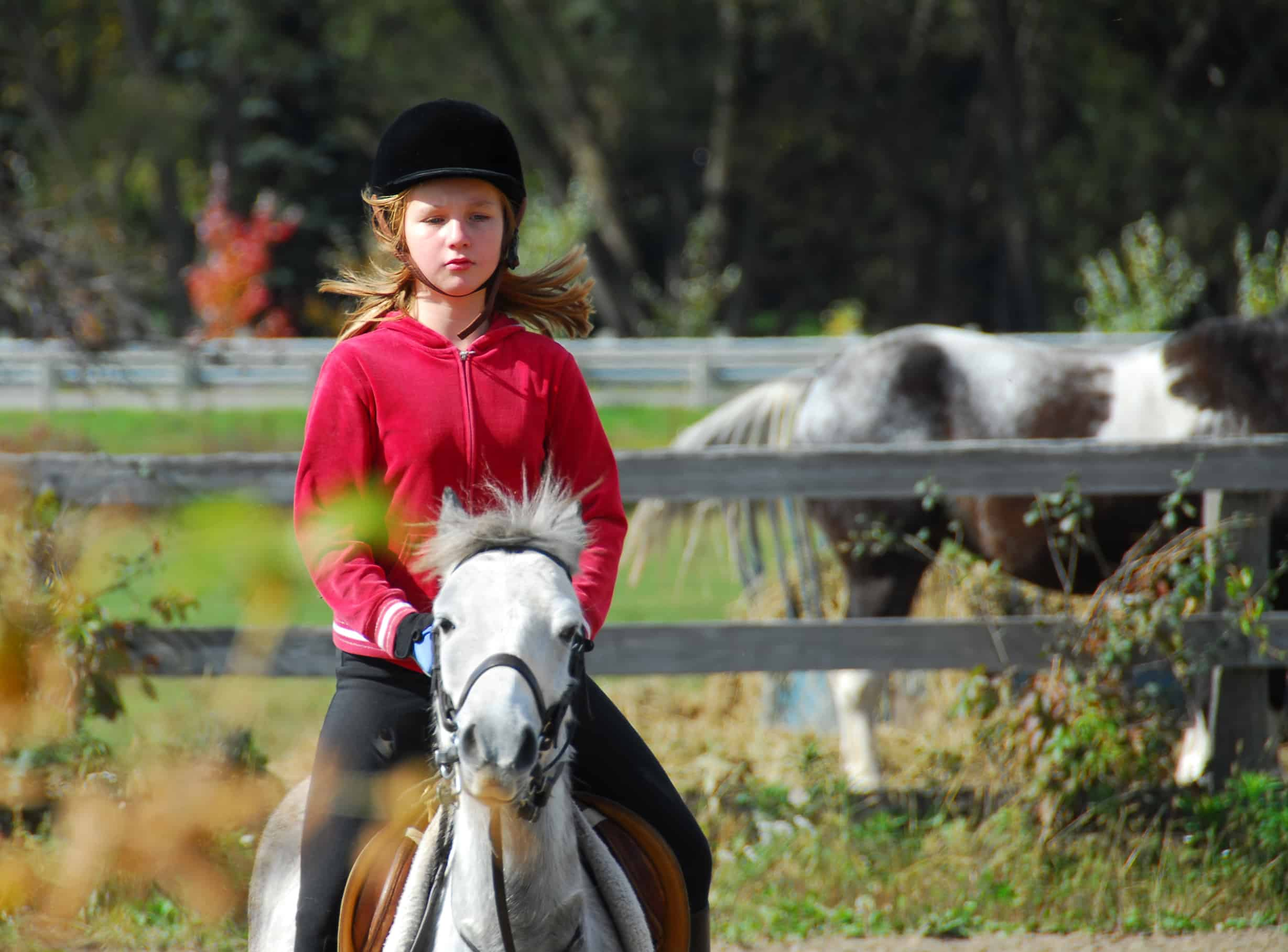 Young girl riding a white equine at countryside