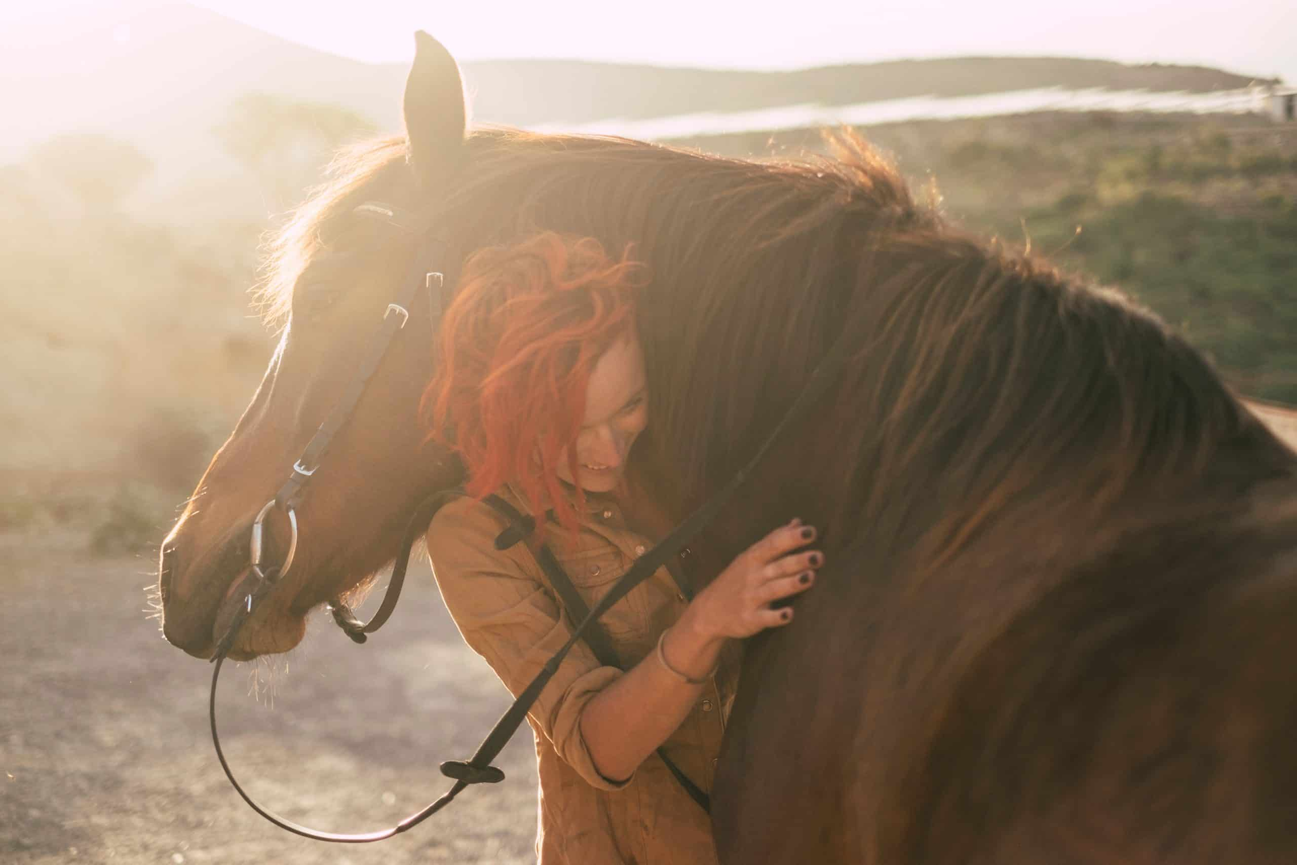 red hair beautiful caucasian woman hug with love his best friends horse under the sunset outdoor in backlight. friendship and relationship animals therapy concept and alternative lifestyle