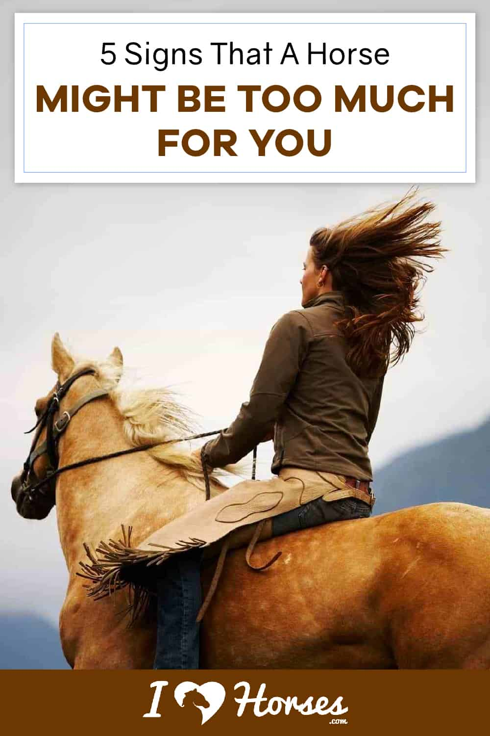 5 Signs That A Horse Might Be Too Much For You