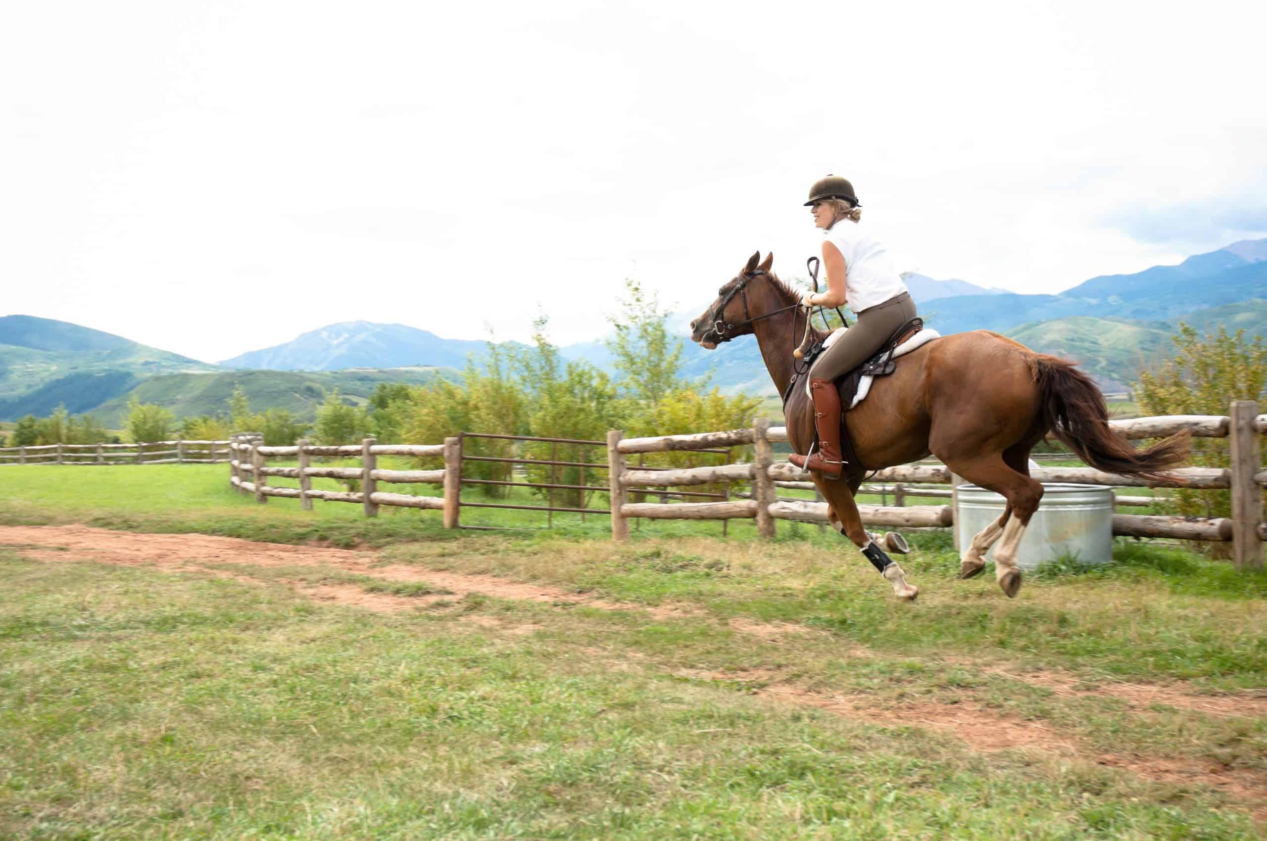 Horseback rider in a field