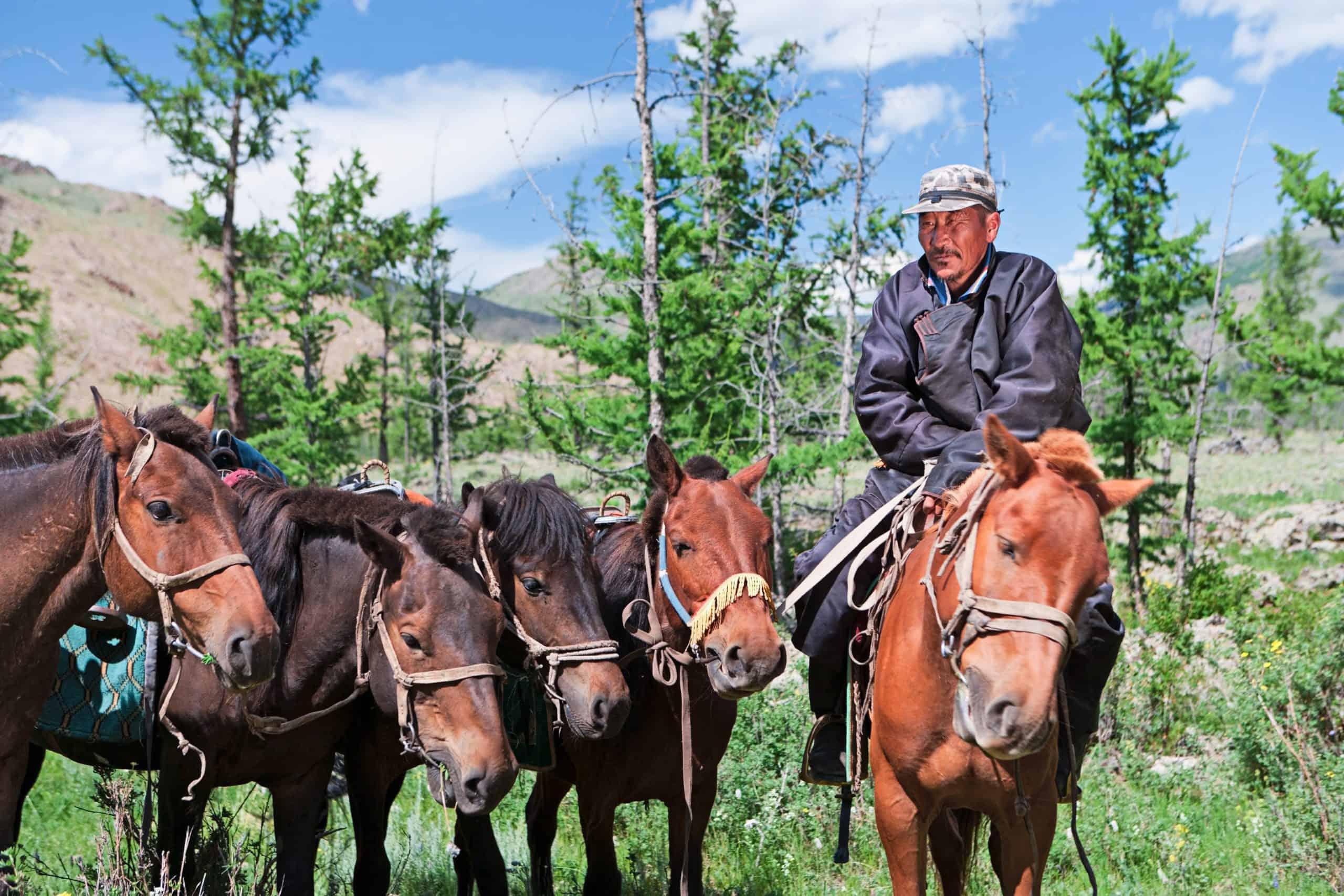 Mongolian horseback rider, mountains in background.http://bem.2be.pl/IS/mongolia_380.jpg