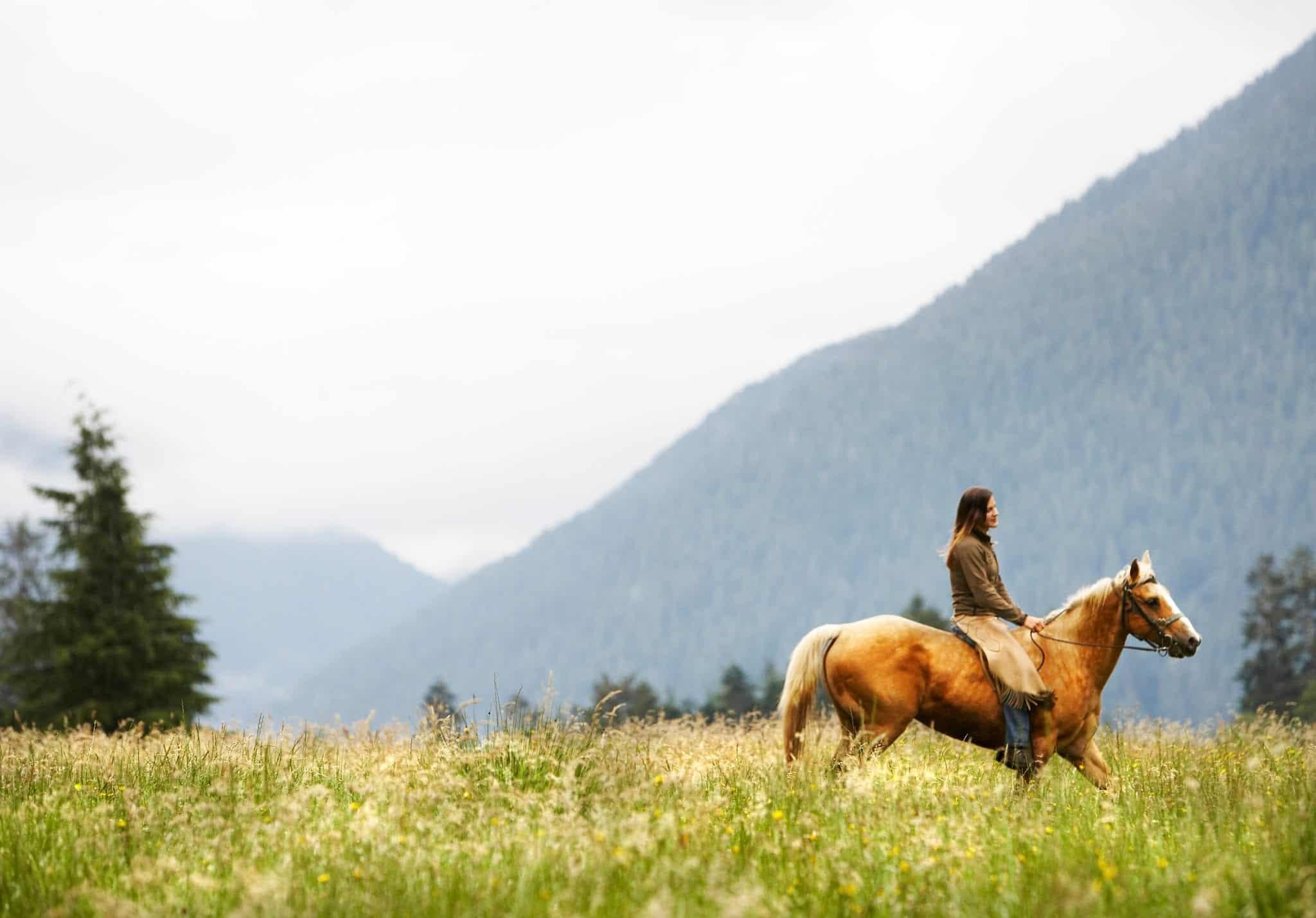 Woman riding horse through field.