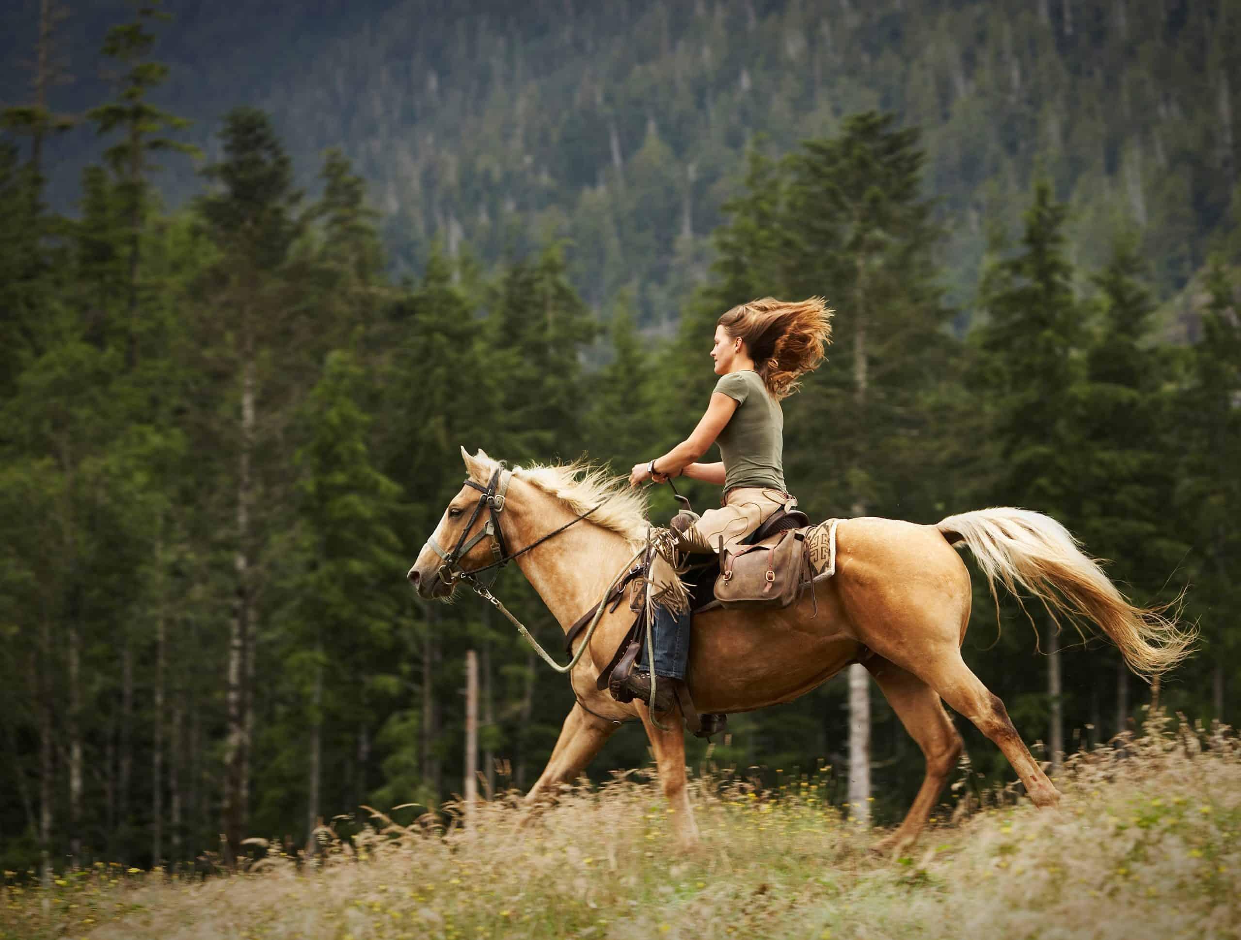 Galloping, motion blur
