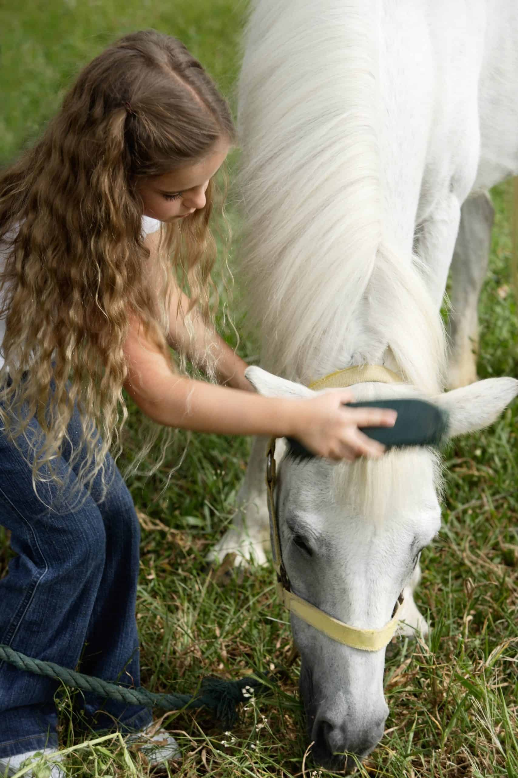 Canva - Young Girl brushing Horse