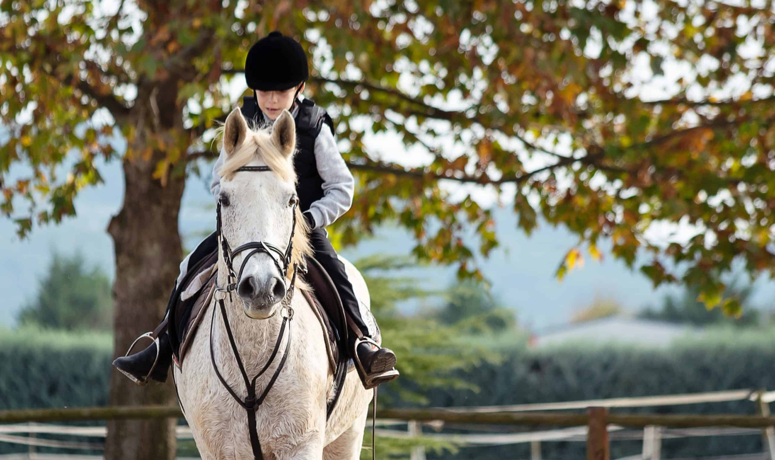 Kid riding white horse during horseback lessons.