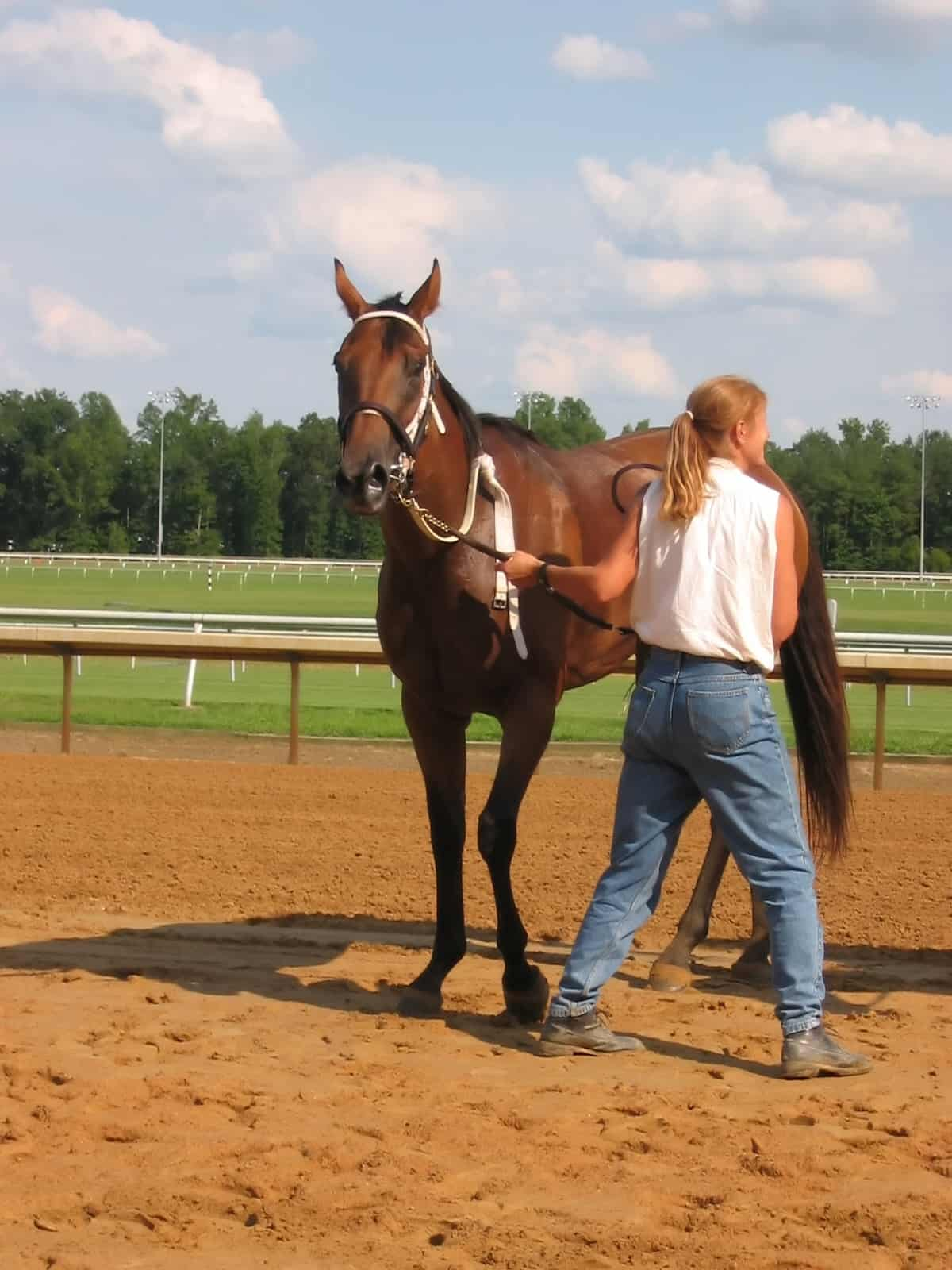 """A thoroughbred race horse at the track, with it's trainer."""