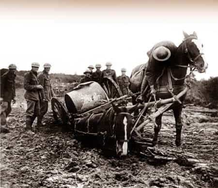 Horses towing a water container stuck in mud. Image source: Simon Butler