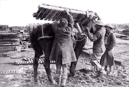 Loading duck boards onto a mule. Image source: Simon Butler