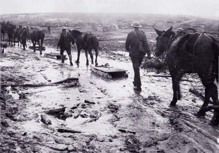 Towing sledges through the mud in France. Image source: Simon Butler
