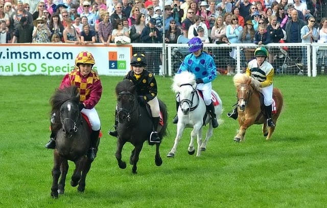 2011 race. Image source: @TimSimpson via Flickr