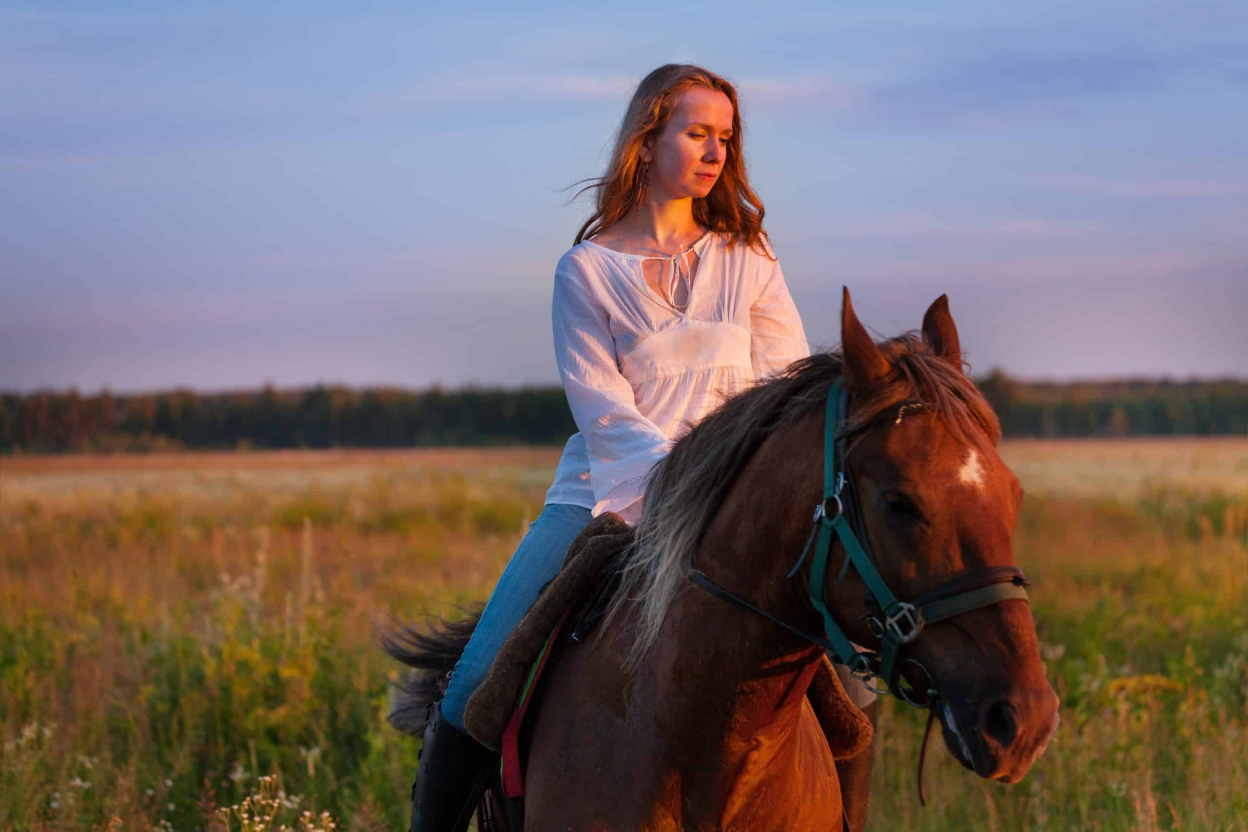 Portrait of beautiful female horseback rider with bay horse in a field at sunset