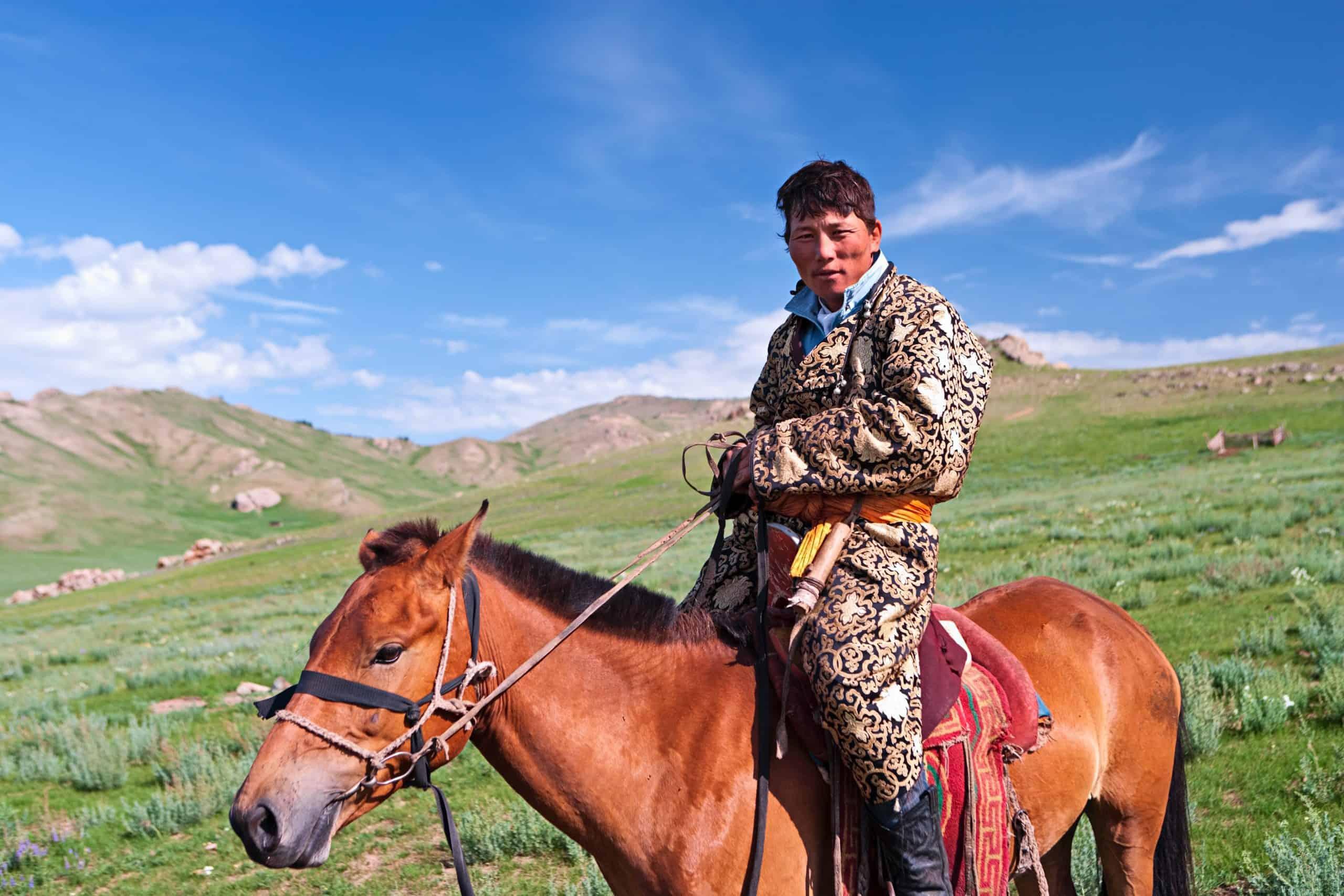 Mongolian horseback rider, meadow in background