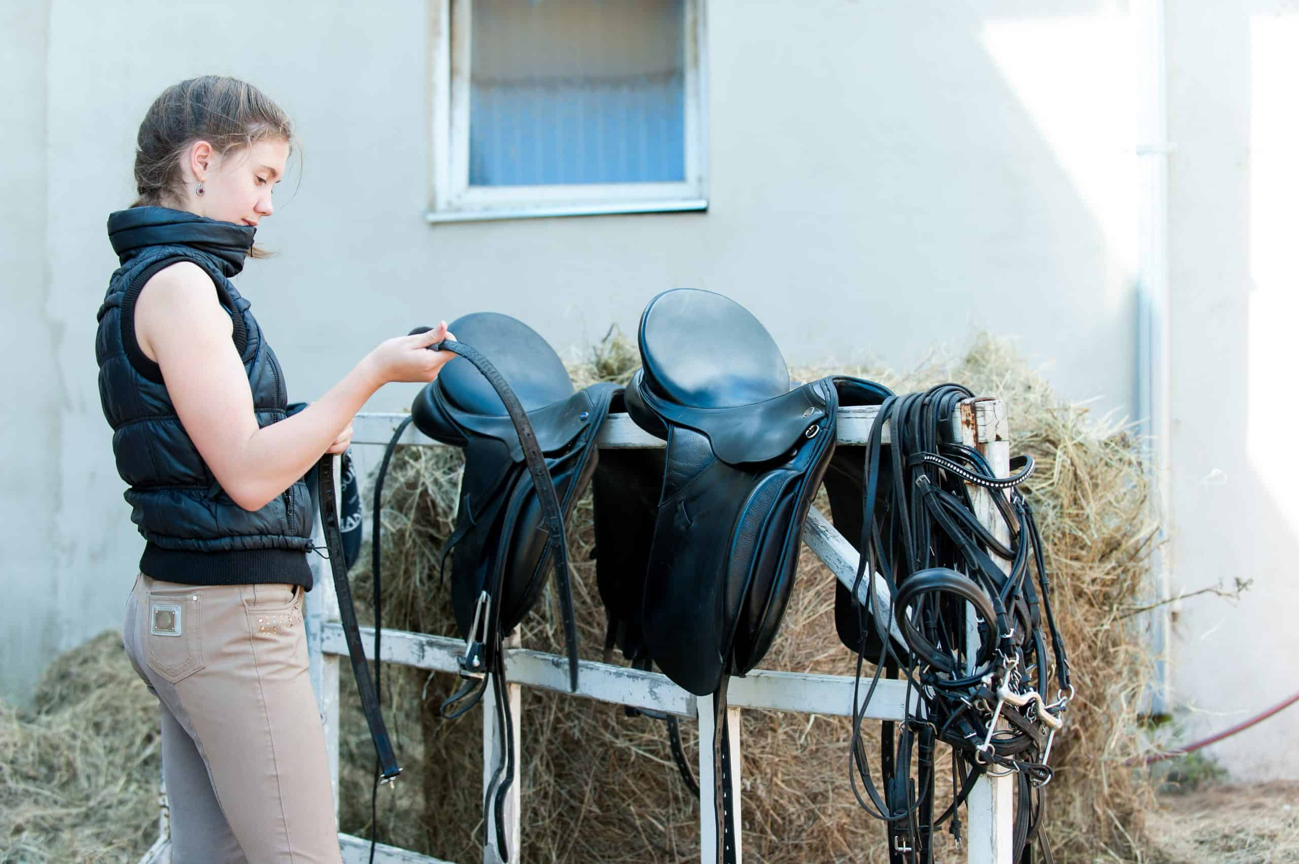 saddle care and maintenance cleaning